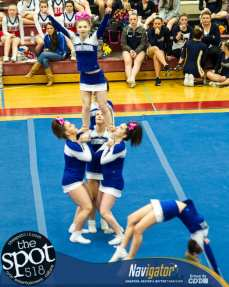 cheerleading section-3700