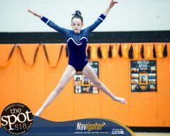 gymnastics-5661