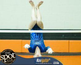 gymnastics-6073