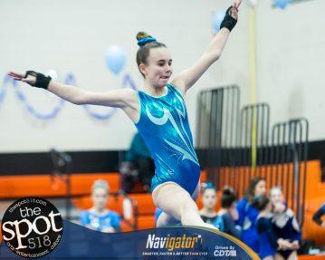 gymnastics-6554