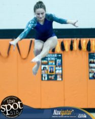 gymnastics-8036