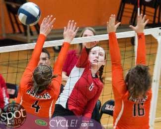 beth-guilderland volleyball-7339