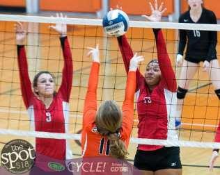 beth-guilderland volleyball-7881
