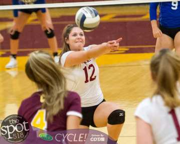 colonie-shaker v'ball-3850