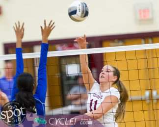 colonie-shaker v'ball-4369
