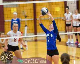 colonie-shaker v'ball-4453