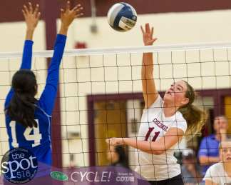 colonie-shaker v'ball-4555