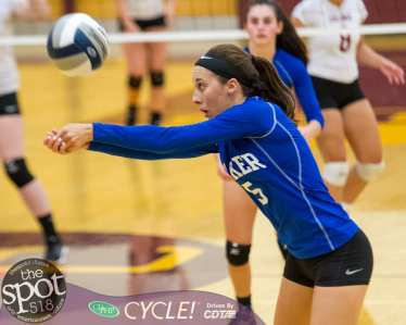 colonie-shaker v'ball-4562