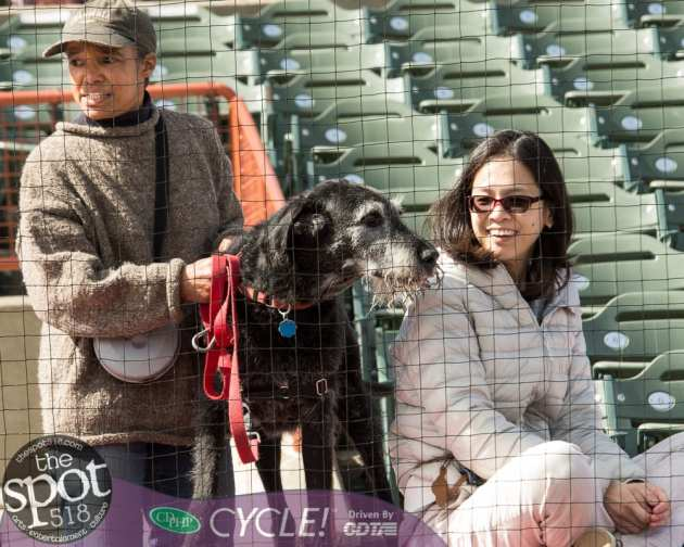 paws in the park-0480