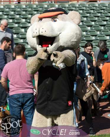 paws in the park-9684