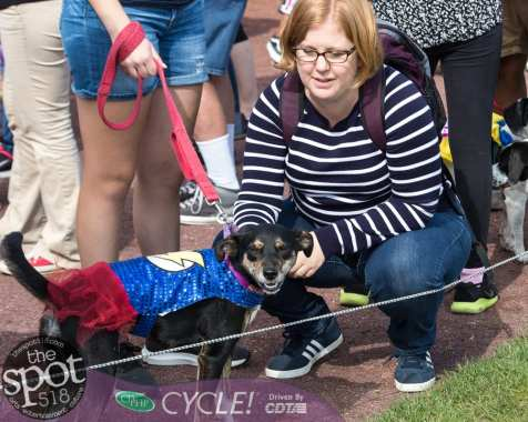 paws in the park-9745