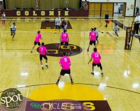 Col-shaker volleyball-5550