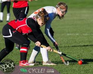 field hockey-9524
