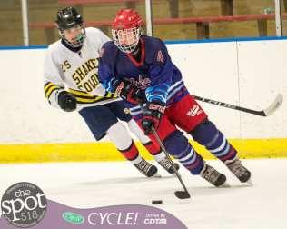 beth hockey-0352