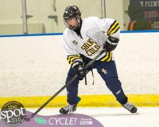 beth hockey-1344