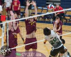 col-shen volleyball-2613