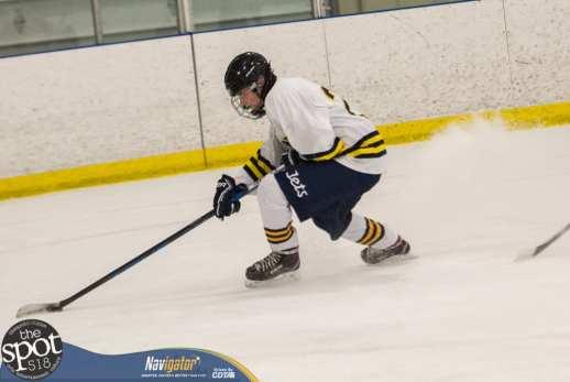 S-C AA hockey-9420