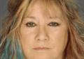 Voorheesville woman allegedly helped man on the run