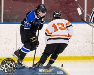 beth hockey-5838