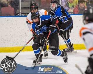 beth hockey-6153