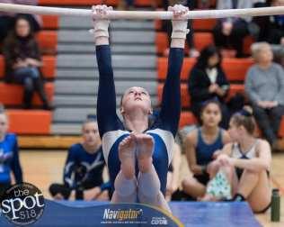 gymnastics-0188