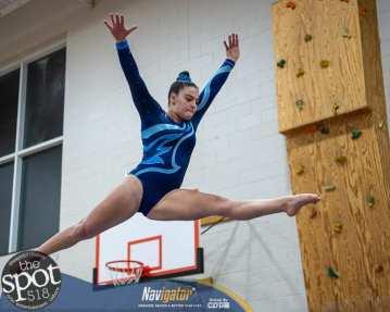gymnastics-4357