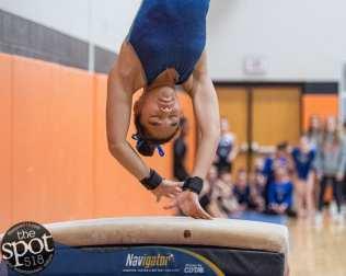 gymnastics-9458