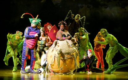 Cirque du Soleil to perform six shows of 'Ovo' at TU Center next week