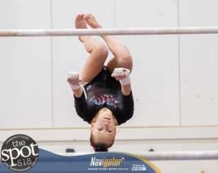 gymnastics-1995