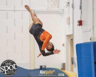 gymnastics-2012