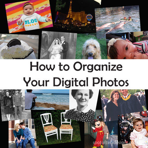 How to Organize Your Digital Photos Tutorial | spotofteadesigns.com