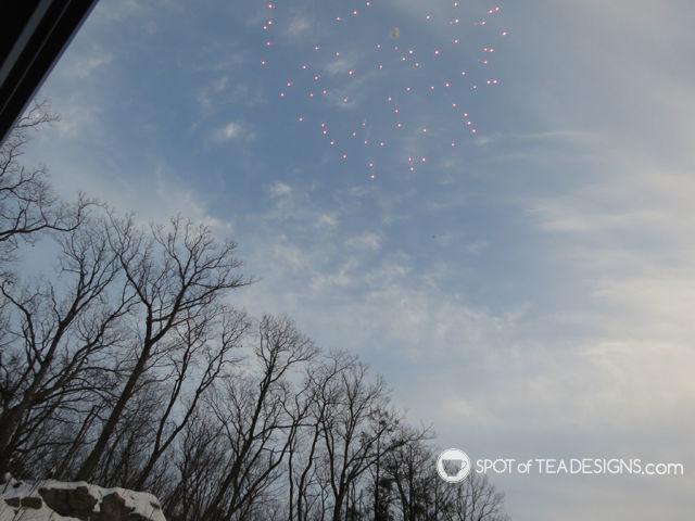 Fireworks Gender Reveal #baby #genderreveal | spotofteadesigns.com
