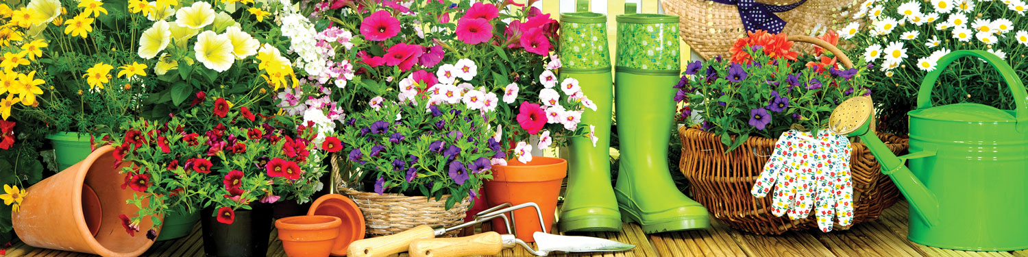 Garden Department Spotts Hardware And Garden Center