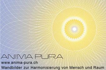 Harmonisierung von Mensch und Raum, anima pura Bilder, raffaela spataro, winterthur