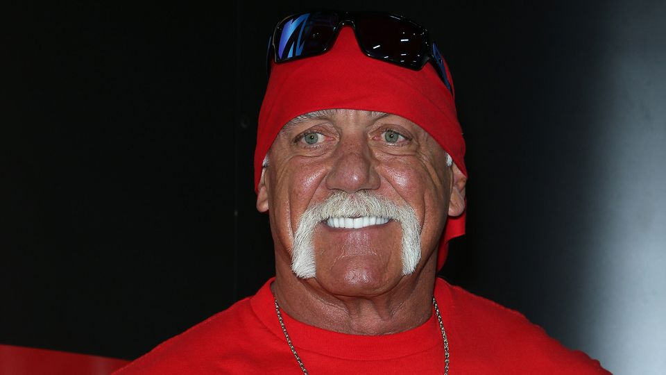 Hulk Hogan falls from grace over racist rant, terminated from WWE and game appearances