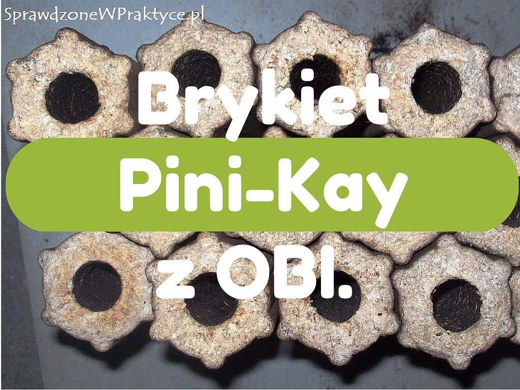 Brykiet Pini-Kay z OBI, którego nie warto kupować.