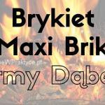 Brykiet Maxi Brik firmy Dąbex nie tylko ładnie wygląda koło kominka