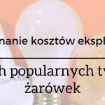 Jaką żarówkę wybrać, tradycyjną, energooszczędną czy LED-ową ? Porównanie kosztów zakupu i eksploatacji