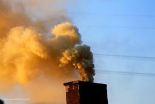 dym po spalaniu śmieci