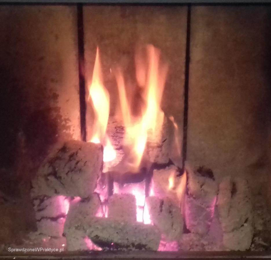 Płonący brykiet GOLBA w kominku