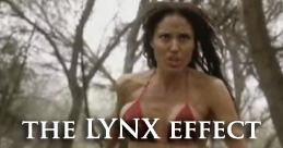 Lynx Effect