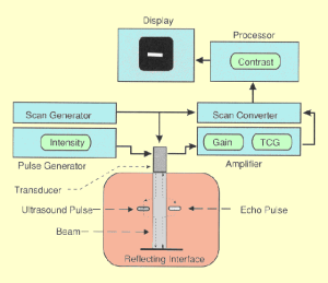 Ultrasound Production and Interactions