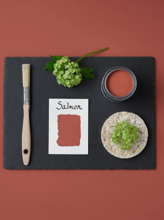 Rust-Oleum-Salmon-Layflat