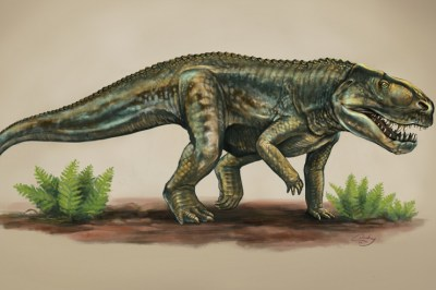 New Mexico Find: Ancient Reptile Species Lived 212 Million Years Ago