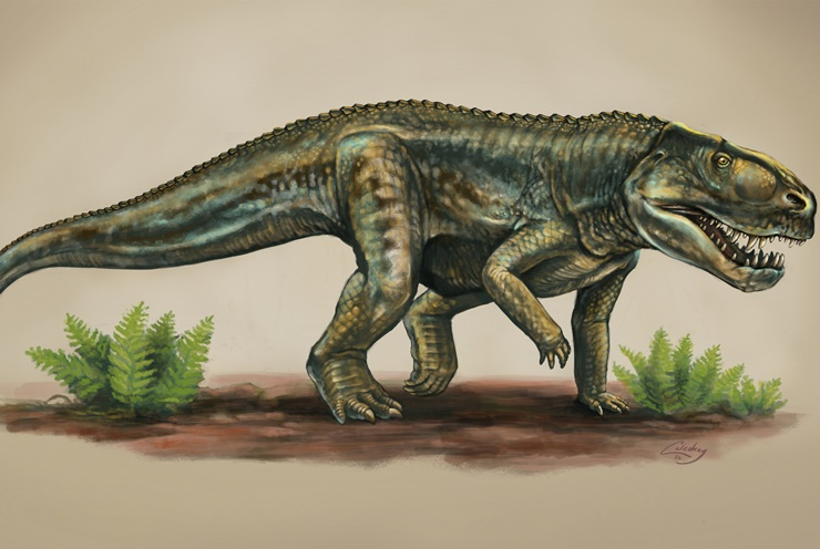 new-mexico-ancient-reptile-species