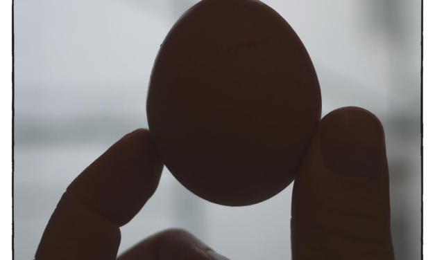 Das Ei des Pythagoras