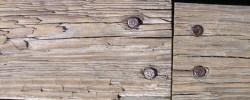 Bei jemandem ein Stein im/am Brett haben - © duboix, morguefile.com
