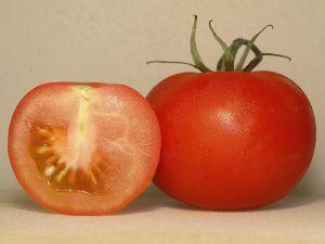 Treulose Tomate - © Thomas Wydra, Wikipedia