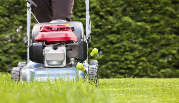 WANTED: Police Searching For Spring Man Who Pawned Stolen Lawn Equipment