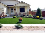 Plantings in Planter Bed colorado springs